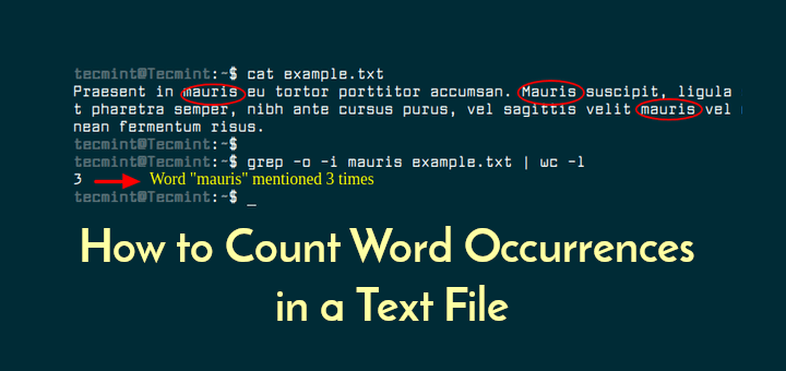Counting Token in Paragraphs