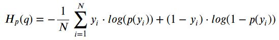 Binary Cross-Entropy / Log loss