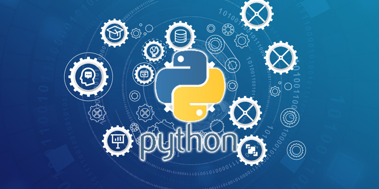Options and Customization in Python