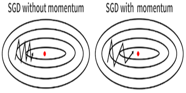 SGD with and without momentum