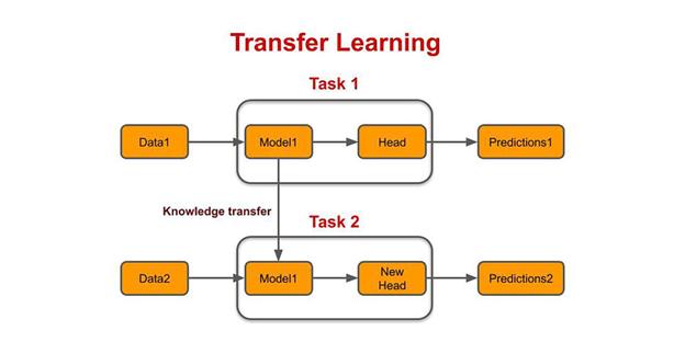 Figure. Transfer Learning