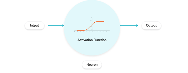 Figure: Neuron