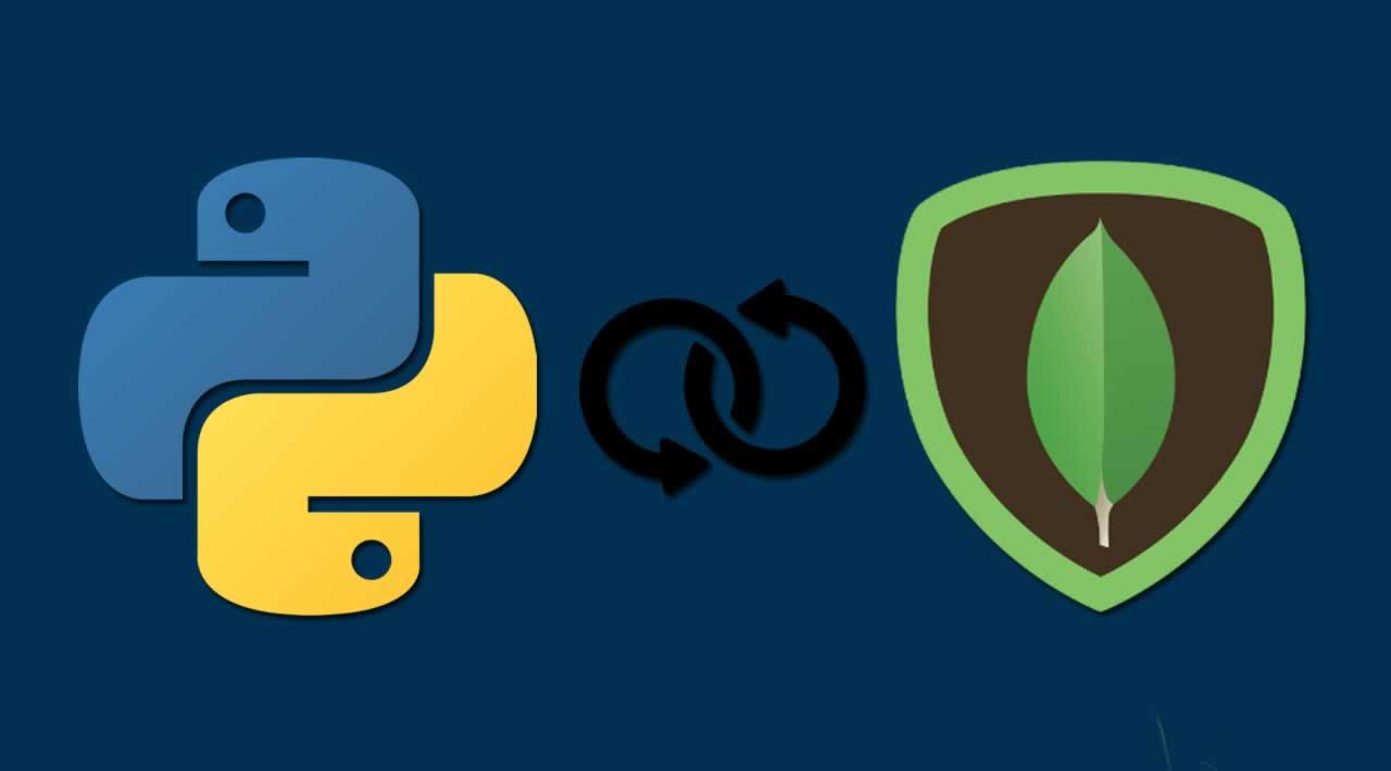MongoDB Python