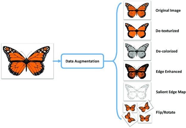 Figure. Data Augmentation