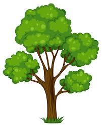 Tree | Insideaiml